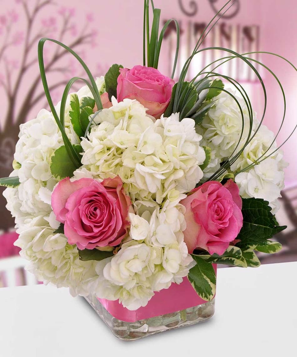 New Baby Flowers & Gifts - Delivered by Wayne, NJ Florist Blosland\'s ...
