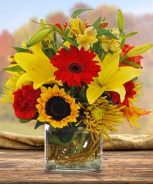 The spice of life is alive in this cheerful cube arrangement of bright blooming sunflowers, mums and lilies.