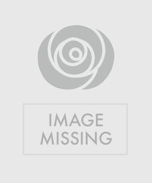 Sweet Admiration - Wayne Area Florist - Bosland's Flowers - Wayne, New Jersey (NJ)