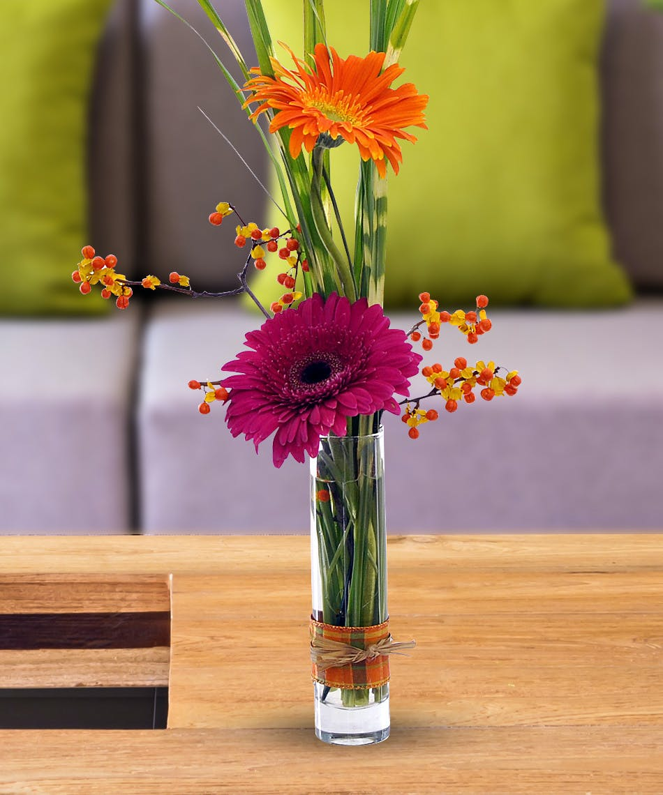 Best value gerbera daisies best value collection delivered by best value gerbera daisies best value collection delivered by wayne nj florist bloslands flower shop izmirmasajfo