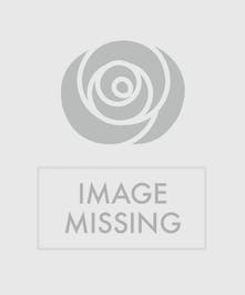 A cute puppy created for the one you love.