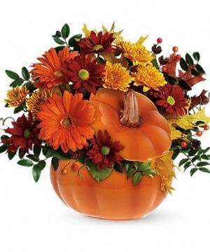 Teleflora's Country Pumpkin - Bosland's Flower Shop